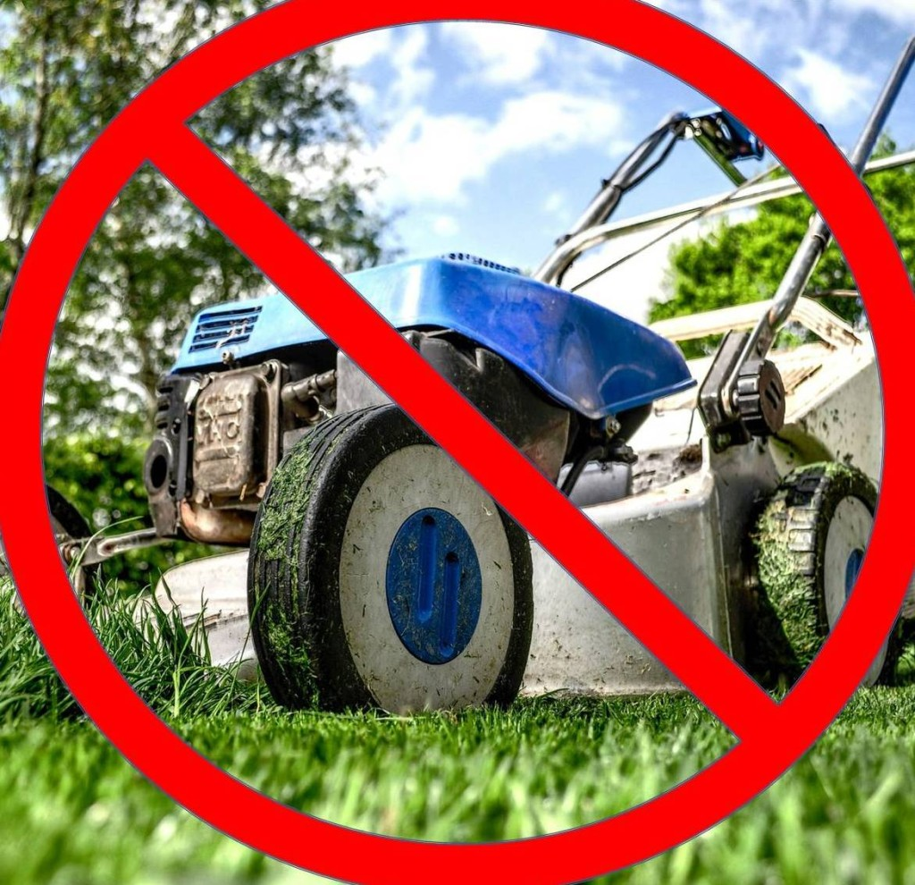 no mowing - Copy