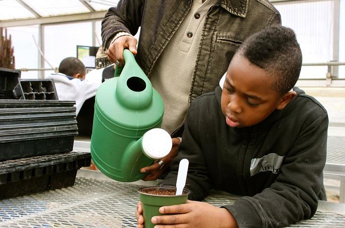 Ammon Thomas getting the seeds on the way to germination.Photo (CC): Sarah Jacobson