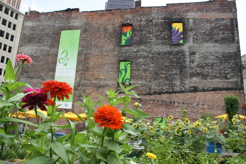 Community Garden in Downtown Detroit (Photo Credit: calamity_hane)