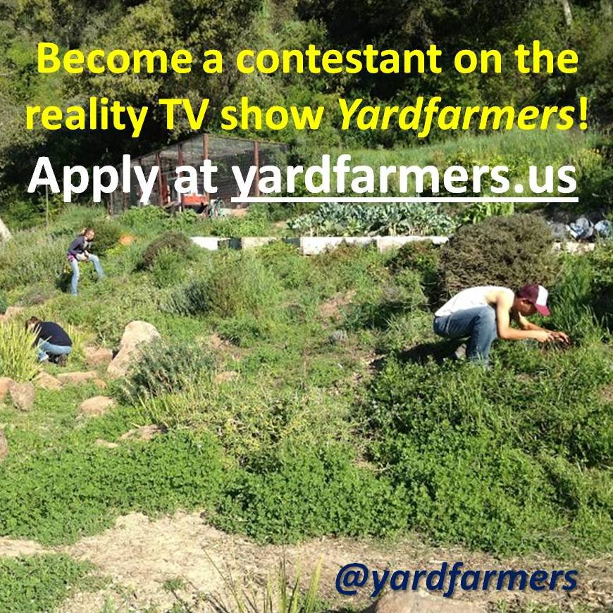 yardfarmers-call-for-contestants