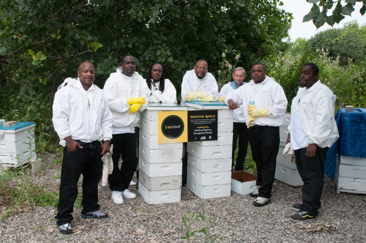 The Sweet Beginnings team unveils hives on the grounds of O'Hare Airport. © Sweet Beginnings, LLC