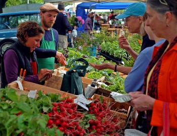The Deering Oaks farmers' market, held every Wednesday and Saturday in Portland, Maine. (Photo Credit: Corey Templeton)