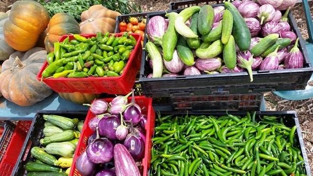 Huerta del Valle at the Farmer's Markets (Photo Credit: Huerta del Valle)