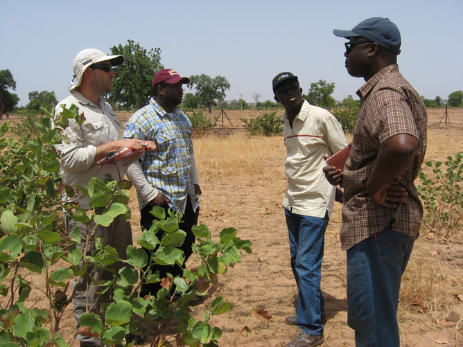 Professor Ibrahima Diedhiou (second from right) from the Senegalese National Agriculture University (ENSA) discussing plans with research team. (Photo Credit: Teamrat A. Ghezzehei)