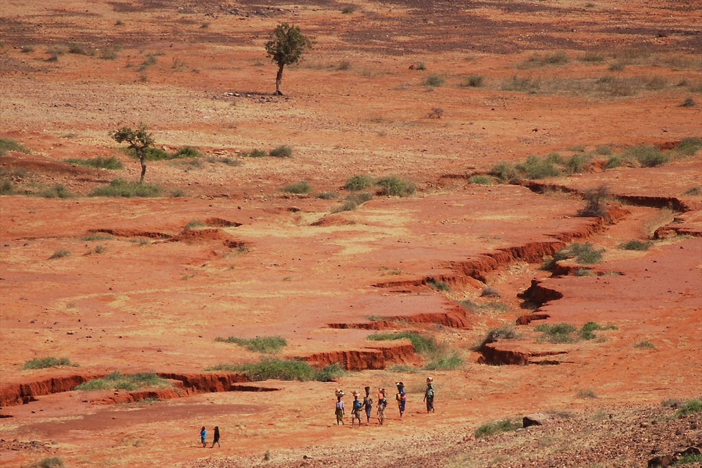 The Sahel, the transition zone between the arid north of Africa and tropic south, has highly variable rainfall. Center for International Forestry Research., CC BY-NC-ND