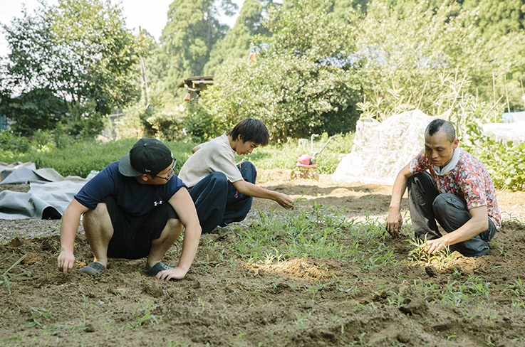 Ali, Shûji and Yōsuke are helping to pull weeds. They are sticking to the shade because of the heat. Ali has great respect for his protégés, as he himself spent some time at a juvenile support center once. © Masaya Tanaka