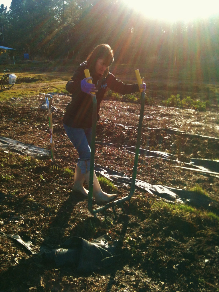 Using a broadfork to break up the soil. (Photo Credit: Richmond Farm School)