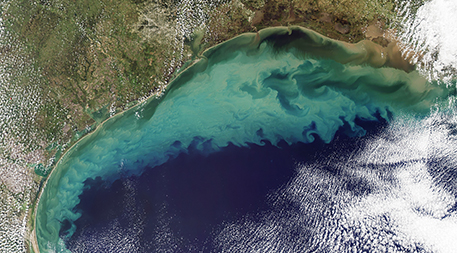 Nitrogen pollution is partly to blame for harmful algae blooms plaguing the Gulf of Mexico and other places that can create coastal dead zones. Image courtesy of Jeff Schmaltz, MODIS Rapid Response Team at NASA GSFC