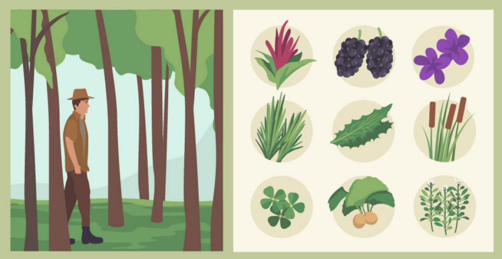 Foraging01