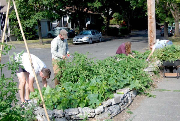 Alleycat Acres relies on the community to help run the farms.