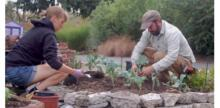 Alleycat Acres Puts New Twist on Community Gardens in Seattle