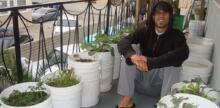 How to Grow a Garden on Your Balcony