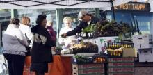 Bus Stop Farmers Markets Get Fresh Produce Into Food Deserts