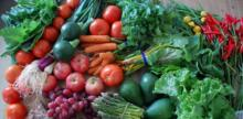 Vermont's Intervale Center's Food Rescue Provides Fresh Produce for Methadone Clinic Patients