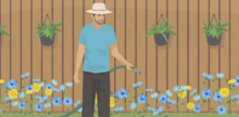 Backyard Bounty: How to Eat the Wild Plants in Your Yard
