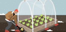 Extending Your Growing Season