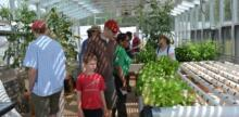 Food Security: The Urban Food Hubs Solution