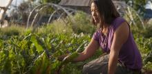 10 Career Options for Food Studies Graduates