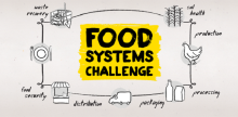 2015-2016 Biomimicry Global Design Challenge - Food Systems