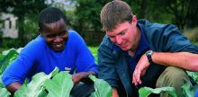 Sustainable Solutions to Youth Unemployment