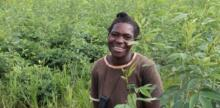 How low-tech farming innovations can make African farmers climate-resilient