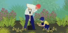 Matrix Gardening
