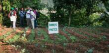Nepali farmers get climate-smart