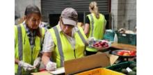 Local Food Distribution Going Global