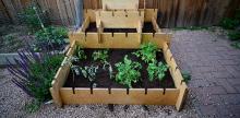 6 Open Source Kits to Kickstart Your Urban Gardening