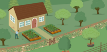 Approach First-Time Permaculture Like a Pro