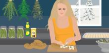 Best Food Preservation Methods for This Season
