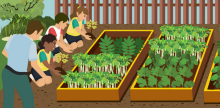 How to Start a School Garden