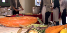 Students Grow Extinct Squash From 800-year-old Seeds