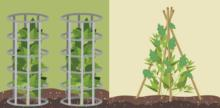 DIY Garden Supports for Strong, Healthy Plants