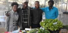 Organic Produce from the Former Township