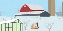 Winter Gardening: Tips and Guidelines Specific to Your Zone