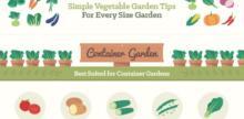 Simple Vegetable Garden Tips